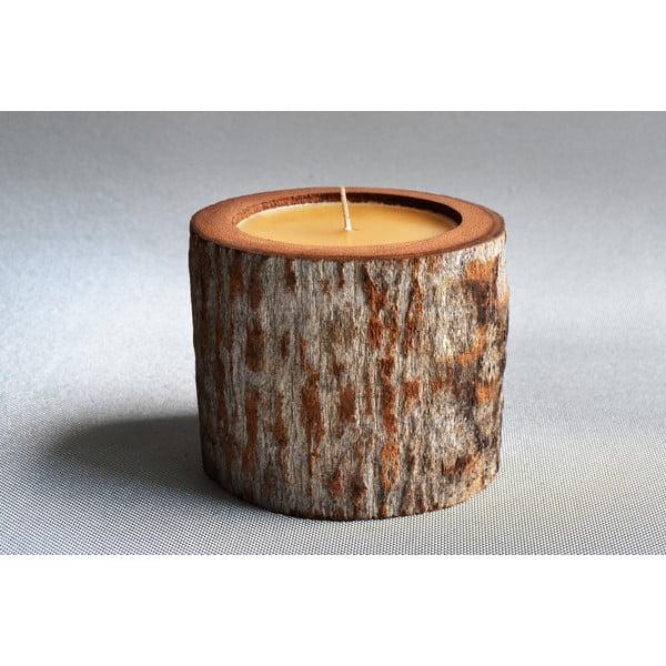 Palmová svíčka Legno se včelím voskem, 100 hodin hoření
