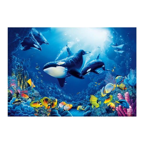 Velkoformátová tapeta Podmořský svět, 366x254 cm