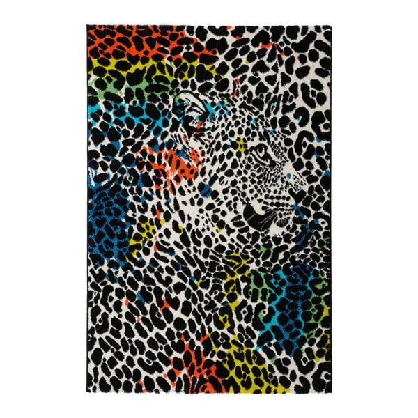 Koberec Obsession My Miami Leopardo, 80 x 150 cm