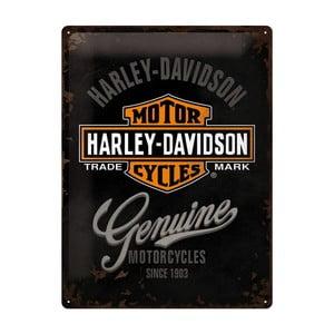 Plechová cedule Harley Davidson Motor, 30x40 cm