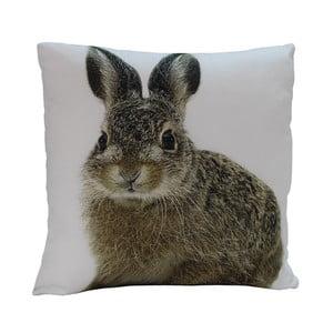 Polštář Rabbit Edie, 45x45 cm