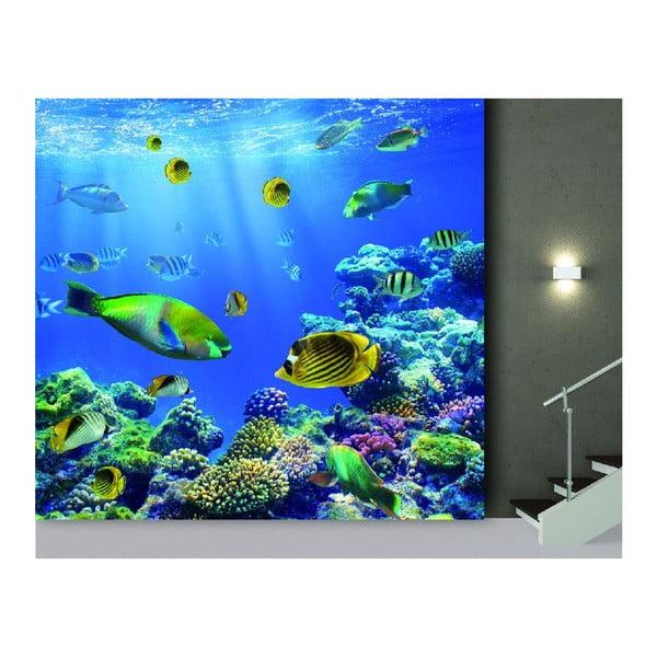 Tapeta Underwater World, 300x280 cm