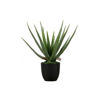 Aloe vera artificială WOOOD, înălțime 46 cm imagine