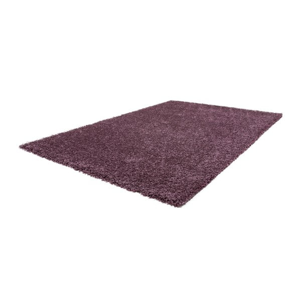 Koberec Solar 78 Violet, 120x160 cm