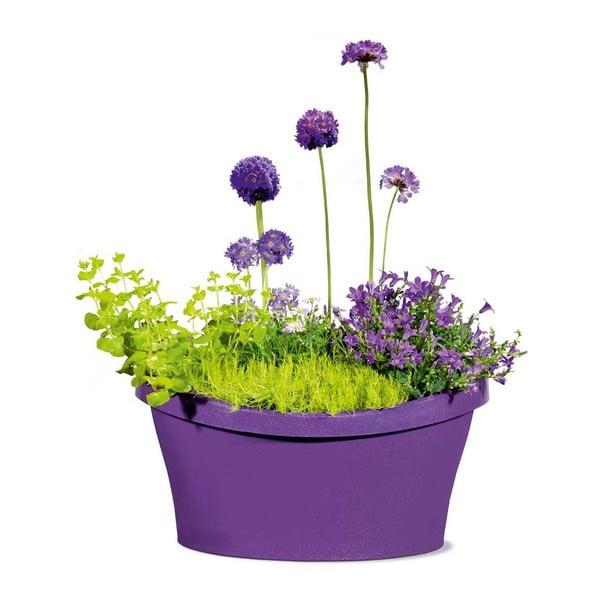 Venkovní květináč Living 40x40 cm, fialový