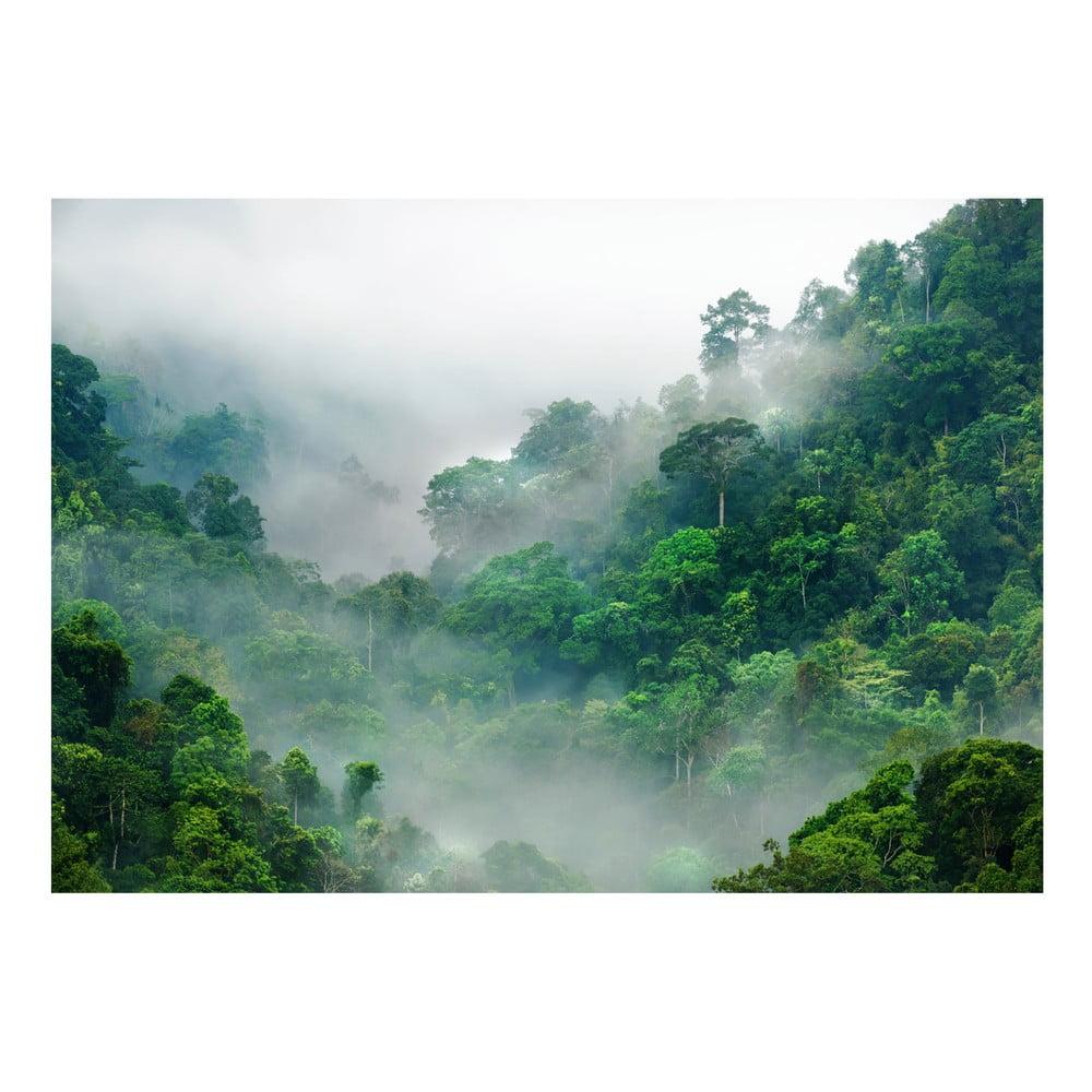 Velkoformátová tapeta Bimago Morning Fog, 400x280cm