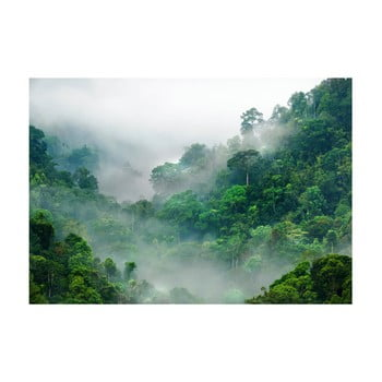 Tapet format mare Bimago Morning Fog, 400 x 280 cm imagine