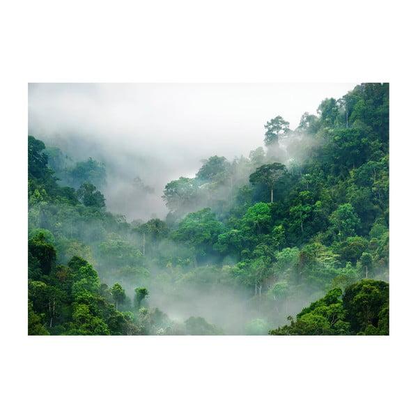 Veľkoformátová tapeta Bimago Morning Fog, 400 x 280 cm
