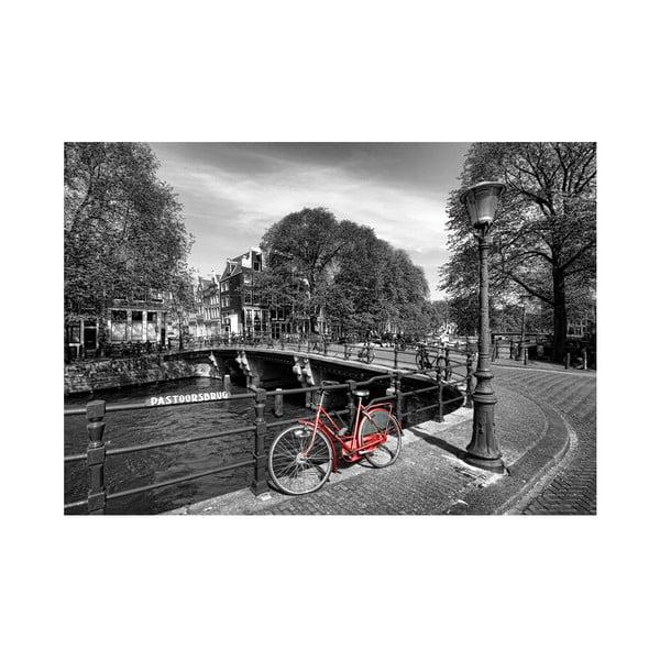 Fotoobraz Červené kolo v Amsterdamu, 90x60 cm