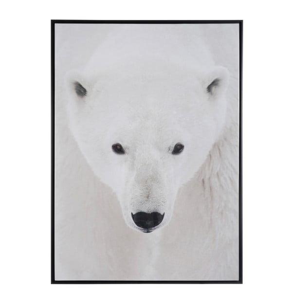 Zarámovaný plakát Polar Bear, 100x140 cm