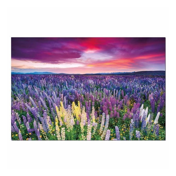 Obraz na plátně Purpel Sky, 120x80 cm