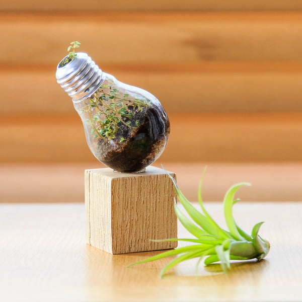 Květináč žárovkového typu Urban Botanist Light Planter