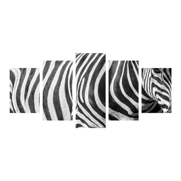 Vícedílný obraz Black&White Zebra