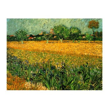 Reproducere pe pânză după Vincent van Gogh - View of arles with irises in the foreground, 40 x 30 cm