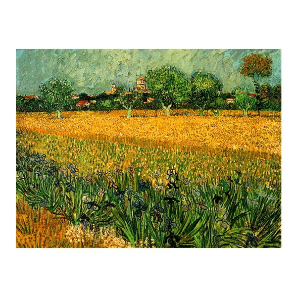 Obraz Vincenta van Gogha - View of arles with irises in the foreground, 40x30 cm