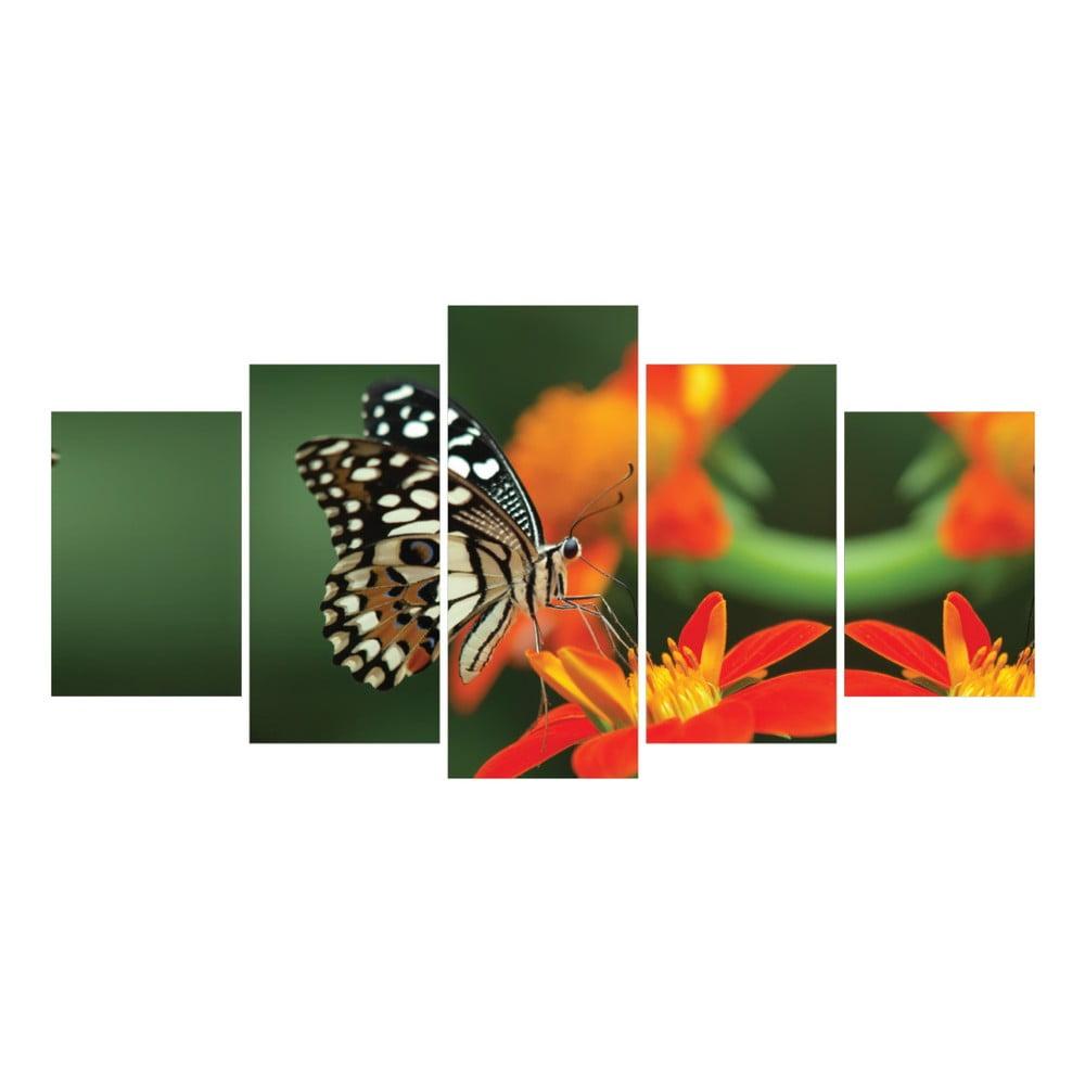 v ced ln obraz la maison des couleurs butterfly bonami. Black Bedroom Furniture Sets. Home Design Ideas