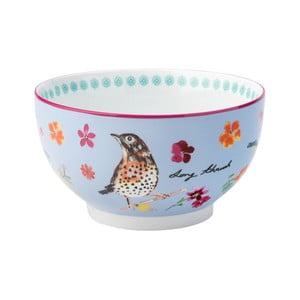 Modrá porcelánová miska David Mason Garden Birds, 500 ml