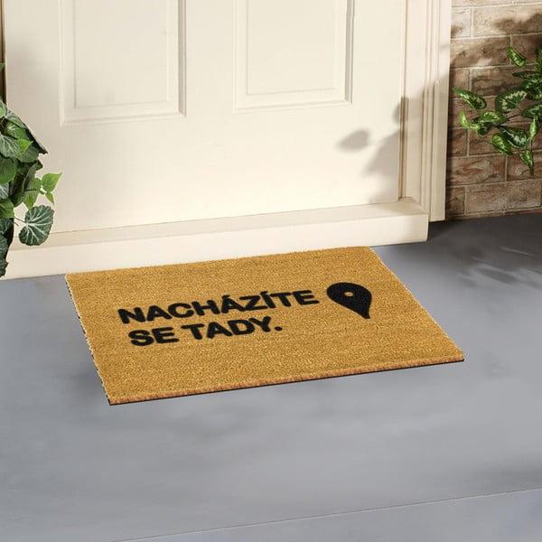 Rohožka Artsy Doormats Tady,40x60cm