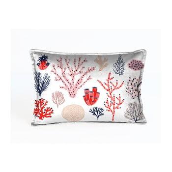 Față de pernă decorativă Velvet Atelier Plankton, 50 x 35 cm poza