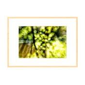 Jiskry, autorská fotografie Borise Stojanova (přírodní olšový rám)