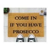 Rohožka z přírodního kokosového vlákna Artsy Doormats Prosecco,40x60cm