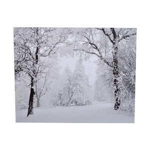 Obraz Ewax Snowy Nature, 40 x 50 cm