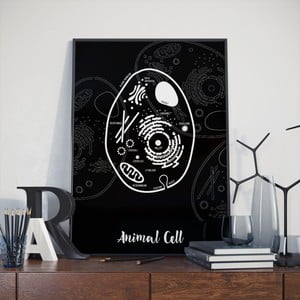 Poster Follygraph Animal Cell Black, 30 x 40 cm