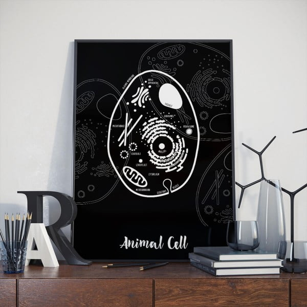 Černý plakát Follygraph Animal Cell, 30x40cm