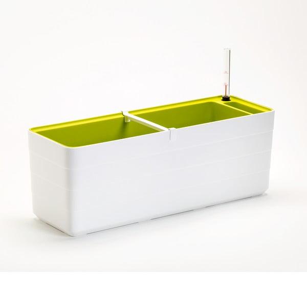Ghiveci dreptunghiular cu sistem de auto-irigare Plastia Berberis , lungime59 cm, alb - verde