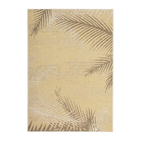 Koberec Tropical 330 Leaf, 160x230 cm