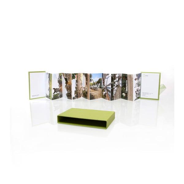 Leporelo pro 10 fotografií, světle zelené