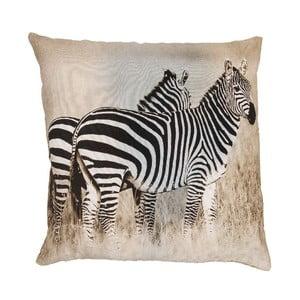 Polštář Zebra, 50x50 cm
