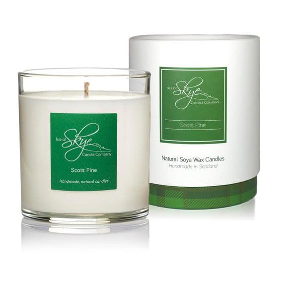Tumbler skót borovi hanga, pacsuli és fűszeres illatú gyertya, 45 óra égési idő - Skye Candles