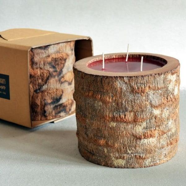 Palmová svíčka Legno Ebony s vůní exotického ovoce, 100 hodin hoření
