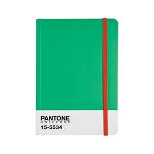 Zápisník s barevnou gumičkou Fern Green/Poppy Red 15-1534
