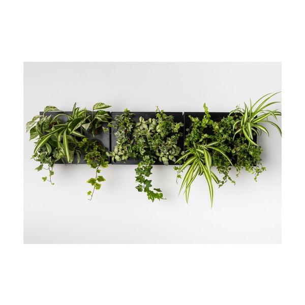 Vertikální květináč HOH! s neviditelným stojanem Trio Smart Nero, 83x38 cm