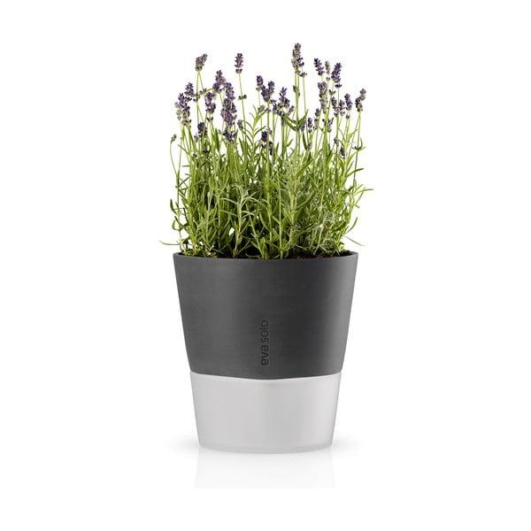 Samopodlévací květináč na bylinky Eva Solo Stone Grey, 20 cm