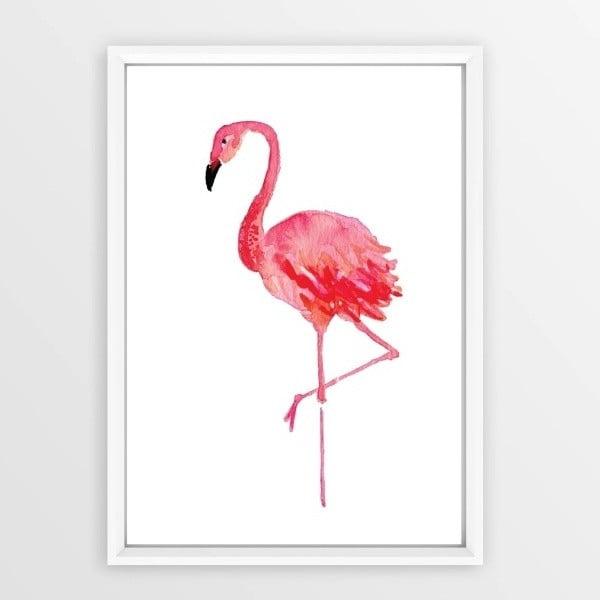 Plakát v rámu Piacenza Art Flamingo, 30x20cm