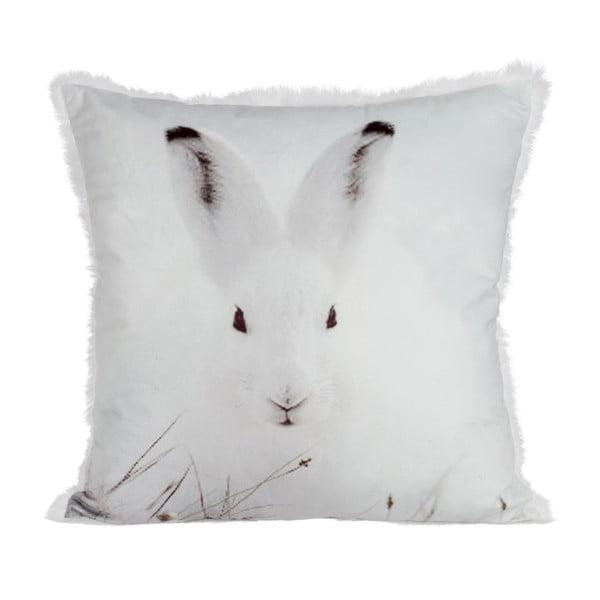 Polštář Rabbit Velvet, 45x45 cm