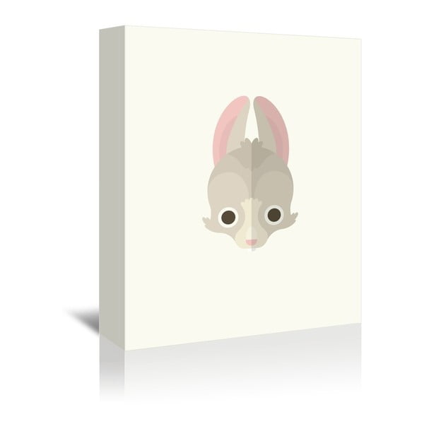 Obraz na plátně Rabbit od Christiana Jacksona