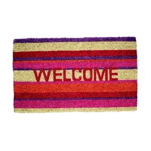 Rohožka Welcome, coloured, 74x44 cm