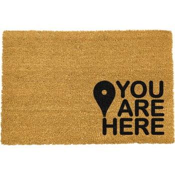 Covoraș intrare din fibre de cocos Artsy Doormats You Are, 40 x 60 cm, negru