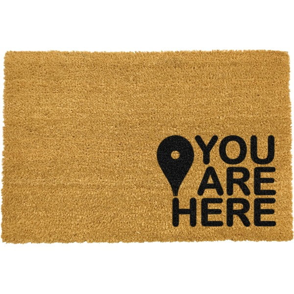 Covoraș intrare din fibre de cocos Artsy Doormats You Are, 40 x 60 cm, negru