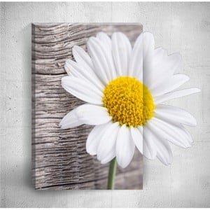 Nástěnný 3D obraz Mosticx Daisy Detail, 40 x 60 cm