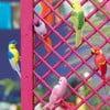 Sada 6 dekorativních ptáčků Talking Tables Fiesta