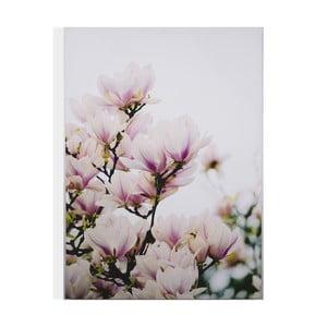 Obraz Graham & Brown Magnolia Blossoms, 50 x 70 cm