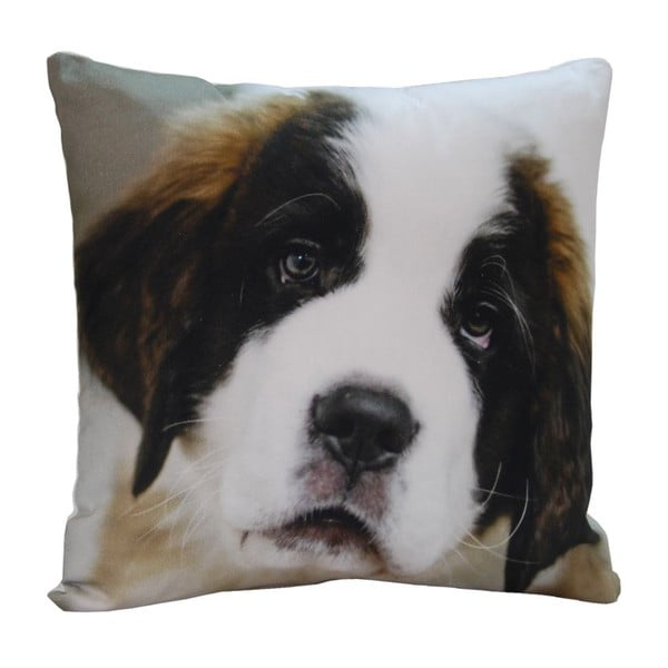 Polštář Cute Puppy, 45x45 cm