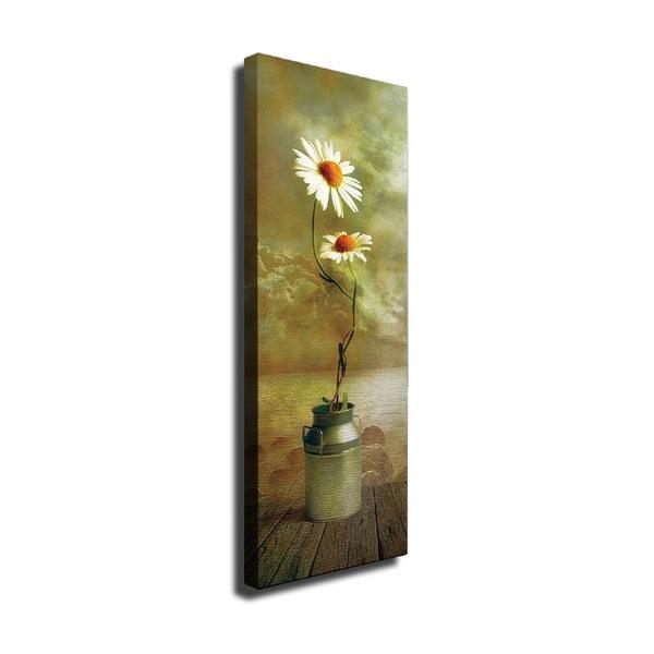 Nástěnný obraz na plátně Daisy, 30 x 80 cm