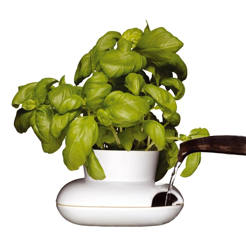 Květináč na bylinky Sagaform Herb