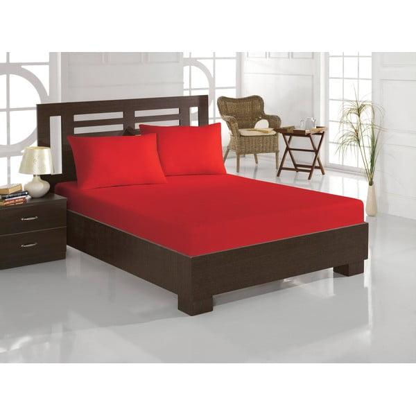 Set cearceaf și 2 fețe de pernă din amestec de bumbac pentru pat dublu Eponj Home Polycotton Red, 160 x 200 cm, roșu
